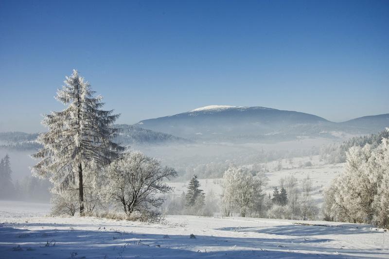 Výsledek obrázku pro zima tuhá